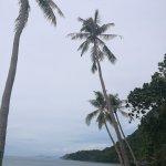 Photo de Samui Boat Lagoon