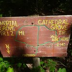 One of the older signs - the trails are well marked.