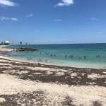 Foto di Fort Zachary Taylor Historic State Park