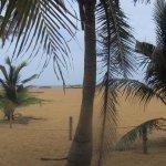 Le sable doré