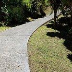 STEEP! Path down to beach area