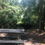 Tent primitive site at Gulf State Park Campground