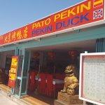 Foto de Pato Pekin Duck