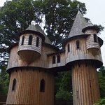 treehouse at birr castle