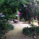 jardin, zona desayunos verano