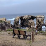 Bench to sit on. Saw whales from here