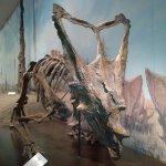 Dinosaur RTM