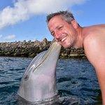 Photo of Dolphin Academy Curacao