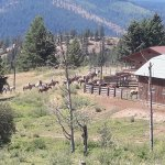 Photo de Bull Hill Guest Ranch