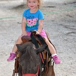Minateure horse rides for ages 2-6 (5-8 minutes) at Mayan Ranch