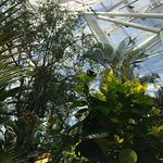 Photo of Niagara Parks Butterfly Conservatory