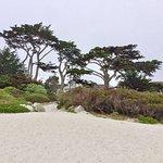 Carmel River State Beach 22