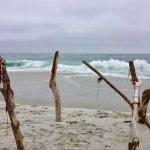 Carmel River State Beach 23