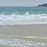 Carmel River State Beach 27