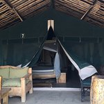 Photo of Kibo Safari Camp