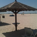 IMG-20121005-00353_large.jpg
