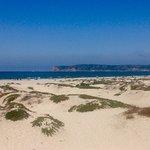 Coronado Island Foto