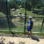 Photo de Bursa Zoo