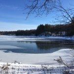 Foto de Walden Pond State Reservation