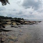 Fossil Shell Beach Foto