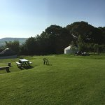 View of Yurt field