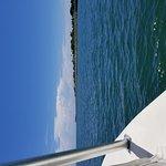 Photo de Sea Leveler Sport Fishing Charters