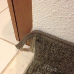 torn carpet at the bathroom door