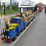 A very nice local attraction the West Somerset Railway.