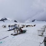 Glacier Camp!