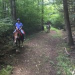Mustang Alley Horse Rescue Riding Stables