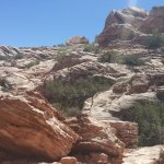 Foto di Red Rock Canyon National Conservation Area