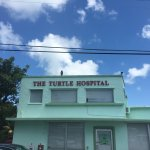 The Turtle Hospital Foto
