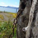 Foto de Icy Strait Point