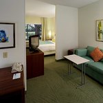 Photo of SpringHill Suites Dallas Arlington North