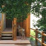 Photo de Northstar Mountain Village Resort