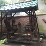 Cute adult chair swing in the courtyard area
