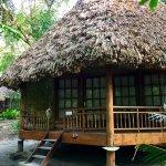AC bamboo villa