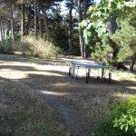 Table de ping-pong sur la pelouse