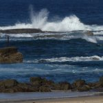 Nobbys Beach on high tide day