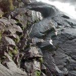 Shannon Falls Provincial Park