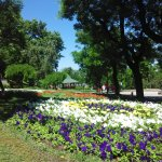 Photo of Primorsky Boulevard