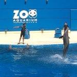 Foto de Zoo Aquarium de Madrid