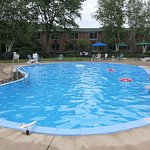 The kidney shaped pool and full-grown trees nearby was a relaxing setting for swimming.