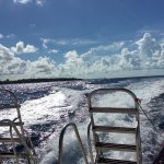 View from the bak of the boat to dive site one