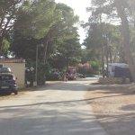 Photo of Zaton Holiday Resort
