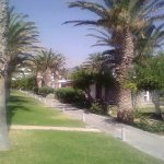 Photo de Creta Beach Hotel & Bungalows