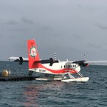 Photo of Ellaidhoo Maldives by Cinnamon