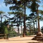to the small botanic garden