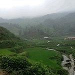Rice terrace along the way