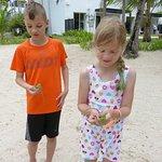 Catching iguanas